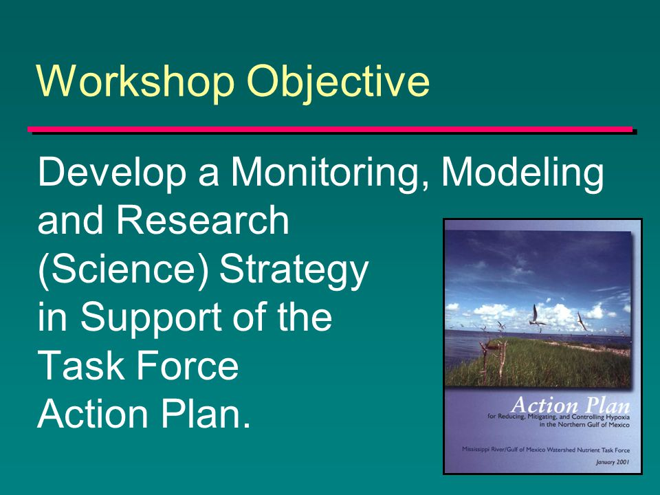 Workshop Objective Develop a Monitoring, Modeling and Research (Science) Strategy in Support of the Task Force Action Plan.