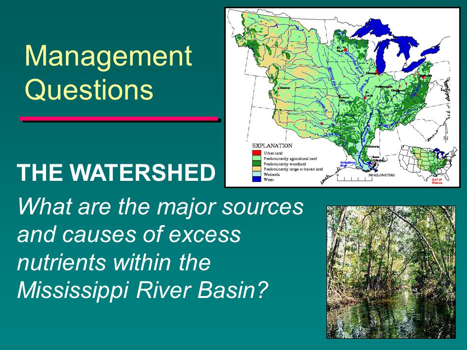 Management Questions THE WATERSHED What are the major sources and causes of excess nutrients within the Mississippi River Basin?