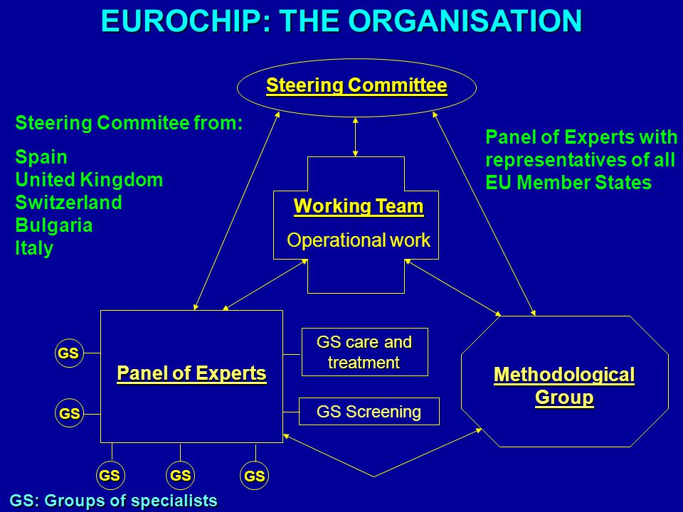 Steering Committee Working Team Operational work Panel of Experts Methodological Group GS: Groups of specialists GS GS care and treatment GS GSGS GS EUROCHIP: THE ORGANISATION Steering Commitee from: Spain United Kingdom Switzerland Bulgaria Italy GS Screening Panel of Experts with representatives of all EU Member States