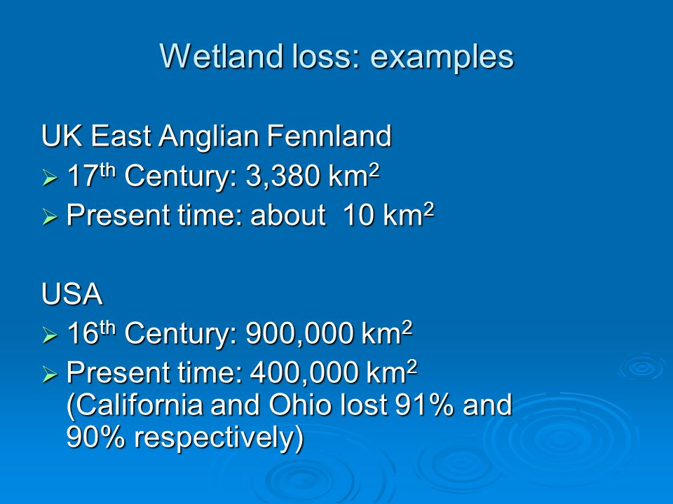 Wetland loss: examples UK East Anglian Fennland  17 th Century: 3,380 km 2  Present time: about 10 km 2 USA  16 th Century: 900,000 km 2  Present time: 400,000 km 2 (California and Ohio lost 91% and 90% respectively)
