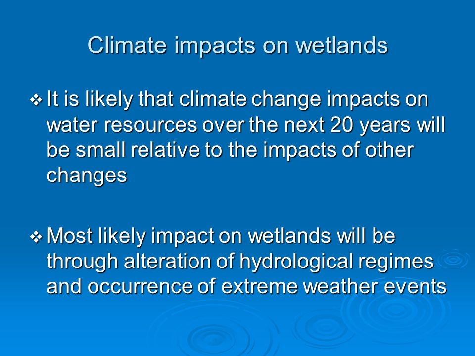 Climate impacts on wetlands  It is likely that climate change impacts on water resources over the next 20 years will be small relative to the impacts of other changes  Most likely impact on wetlands will be through alteration of hydrological regimes and occurrence of extreme weather events