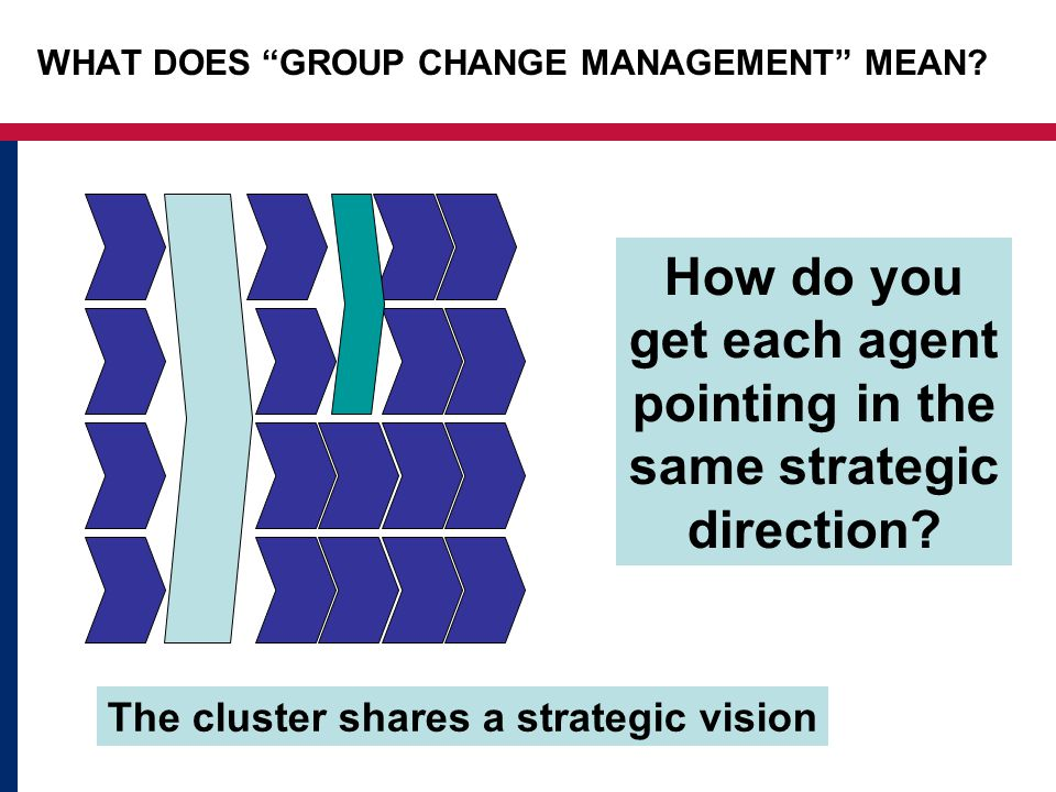 """The cluster shares a strategic vision How do you get each agent pointing in the same strategic direction? WHAT DOES """"GROUP CHANGE MANAGEMENT"""" MEAN?"""