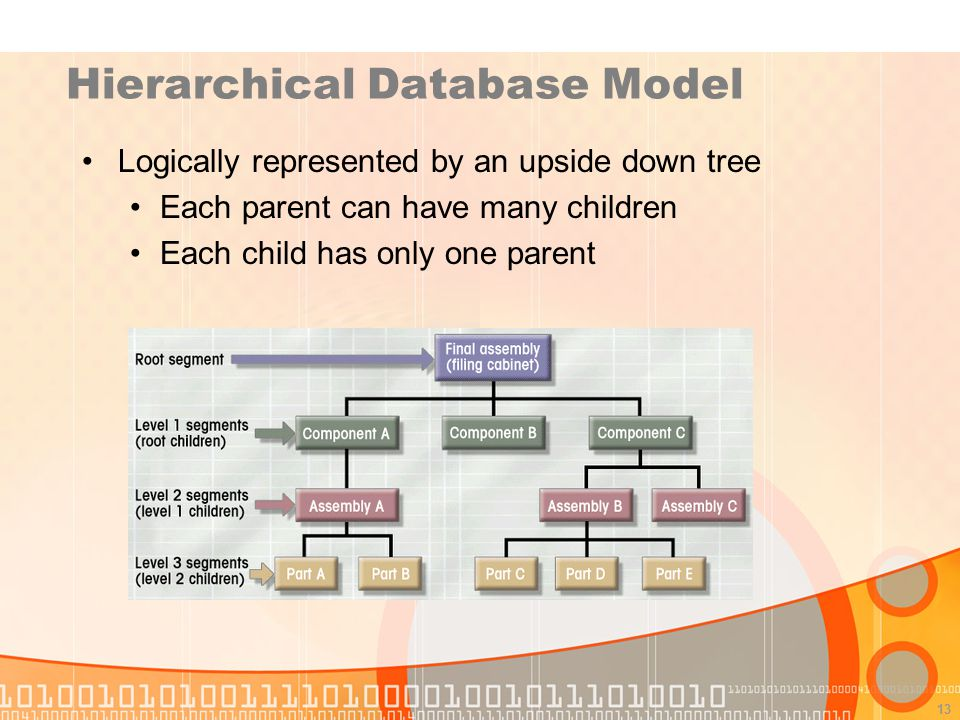 13 Hierarchical Database Model Logically represented by an upside down tree Each parent can have many children Each child has only one parent