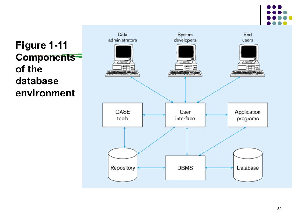 37 Figure 1-11 Components of the database environment