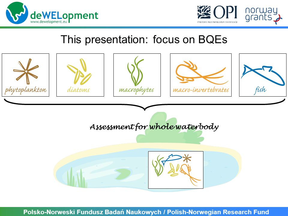 Polsko-Norweski Fundusz Badań Naukowych / Polish-Norwegian Research Fund This presentation: focus on BQEs Assessment for whole waterbody