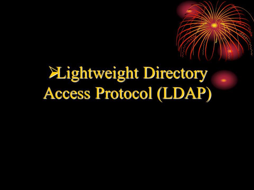  Lightweight Directory Access Protocol (LDAP)