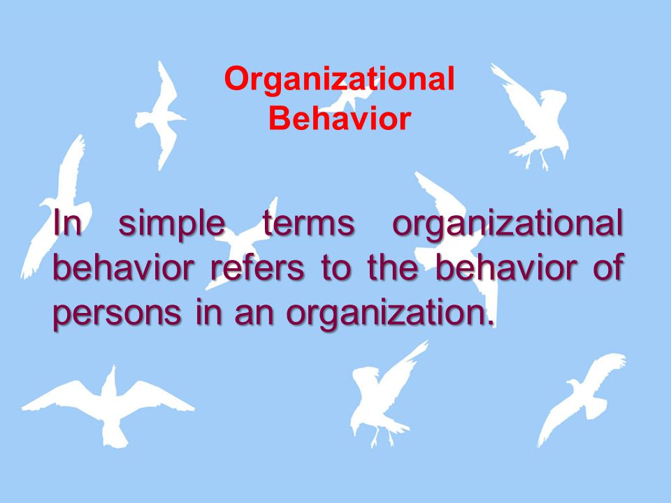 In simple terms organizational behavior refers to the behavior of persons in an organization. Organizational Behavior