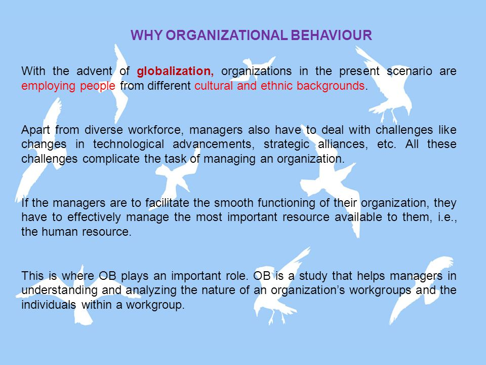 The study of Organizational Behavior (OB) is very interesting and challenging too.
