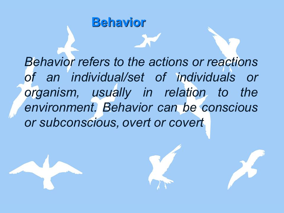 Behavior Behavior refers to the actions or reactions of an individual/set of individuals or organism, usually in relation to the environment. Behavior