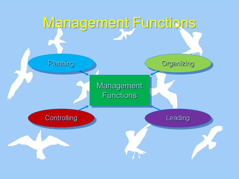 Organizational Behavior focuses on five levels of analysis.