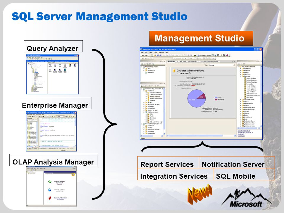 Management Studio SQL Server Management Studio Query Analyzer Enterprise Manager OLAP Analysis Manager SQL Mobile Report ServicesNotification Server Integration Services
