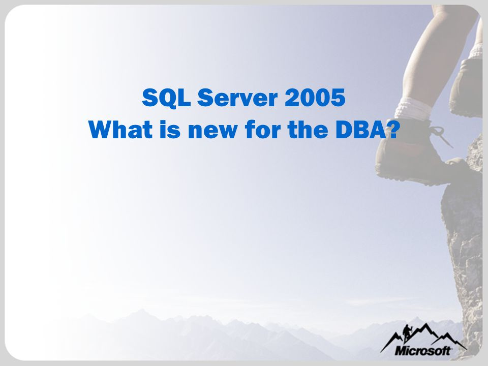 SQL Server Management Studio Enhanced Query Authoring –T-SQL –Analysis Services – MDX and XML/A Dynamic Help SQLCMD Mode Improved display for XML results Integrated execution plan graphing tool for Enhanced Project Management Script Projects Enhanced Templates