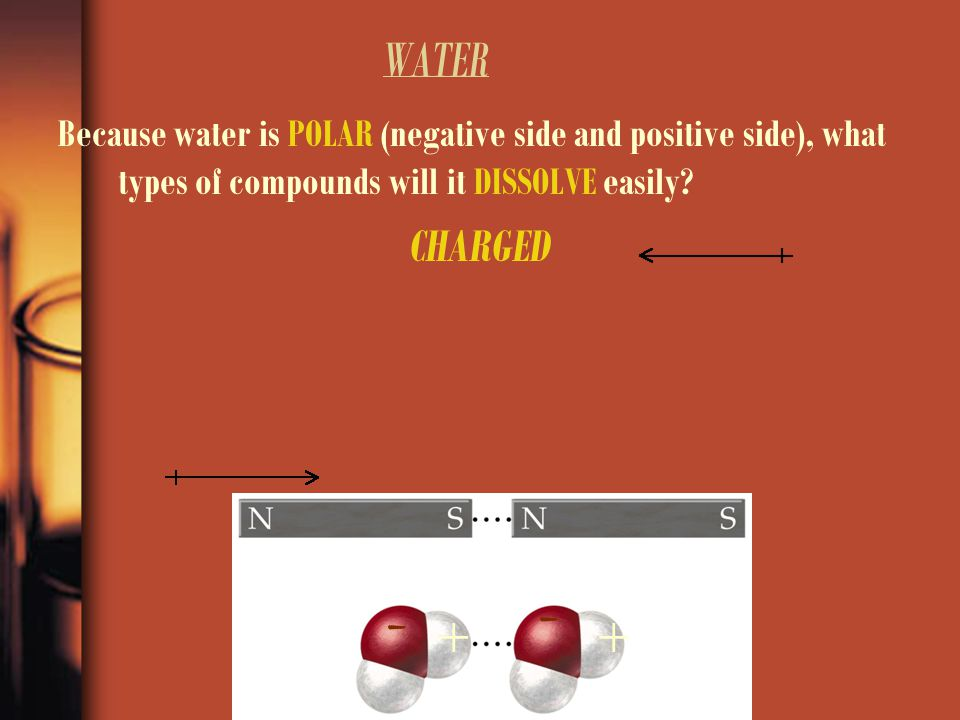 WATER Because water is POLAR (negative side and positive side), what types of compounds will it DISSOLVE easily? CHARGED ++ - -