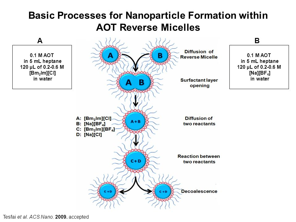 Basic Processes for Nanoparticle Formation within AOT Reverse Micelles Tesfai et al. ACS Nano. 2009. accepted 0.1 M AOT in 5 mL heptane 120 μL of 0.2-