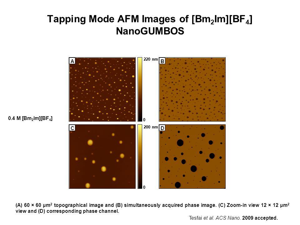 Tapping Mode AFM Images of [Bm 2 Im][BF 4 ] NanoGUMBOS A 12µm 0 220 nm B 12µm C 2µm 0 200 nm D 2µm A 0 220 nm B C 0 200 nm D (A) 60 × 60 μm 2 topograp
