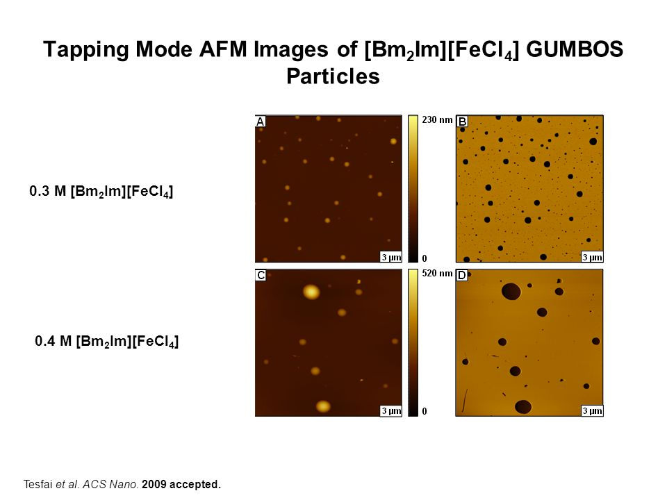 Tapping Mode AFM Images of [Bm 2 Im][FeCl 4 ] GUMBOS Particles (A) Topographical image of magnetic nanoGUMBOS with a diameter near 100 nm and (B) the