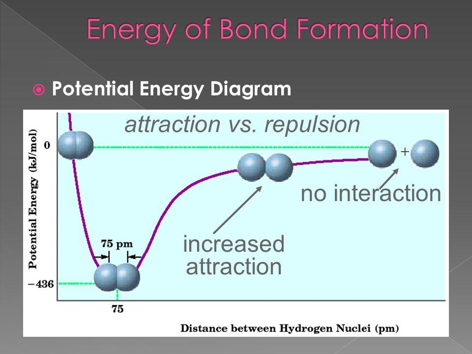 no interaction attraction vs. repulsion increased attraction  Potential Energy Diagram