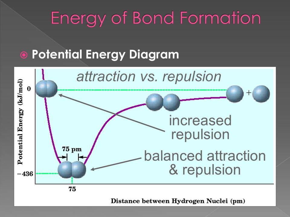 balanced attraction & repulsion increased repulsion attraction vs. repulsion  Potential Energy Diagram