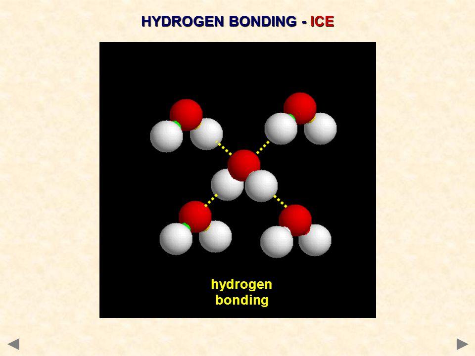 HYDROGEN BONDING - ICE hydrogen bonding