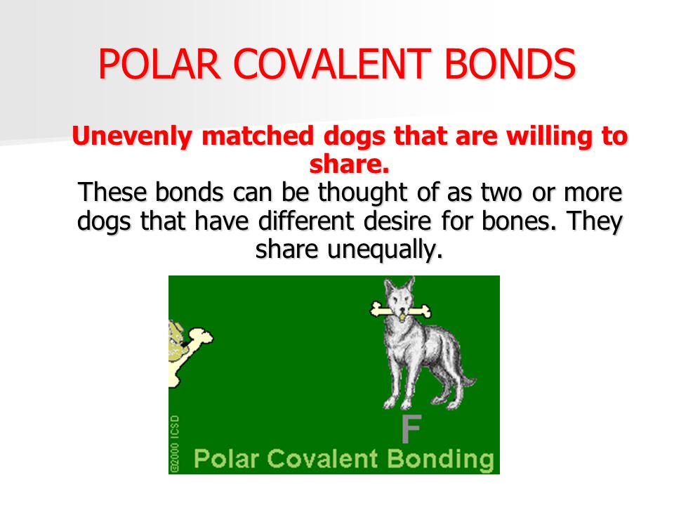 POLAR COVALENT BONDS Unevenly matched dogs that are willing to share. These bonds can be thought of as two or more dogs that have different desire for