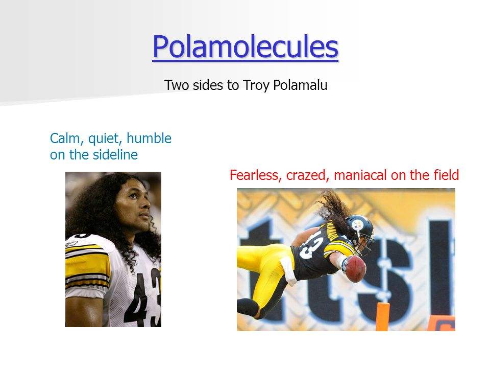 Polamolecules Polamolecules Calm, quiet, humble on the sideline Fearless, crazed, maniacal on the field Two sides to Troy Polamalu