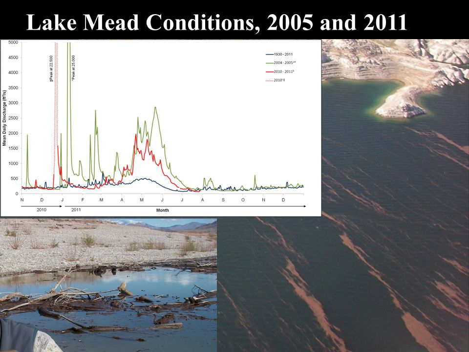 Lake Mead Conditions, 2005 and 2011  Heavy winds and Large woody debris, bad for props