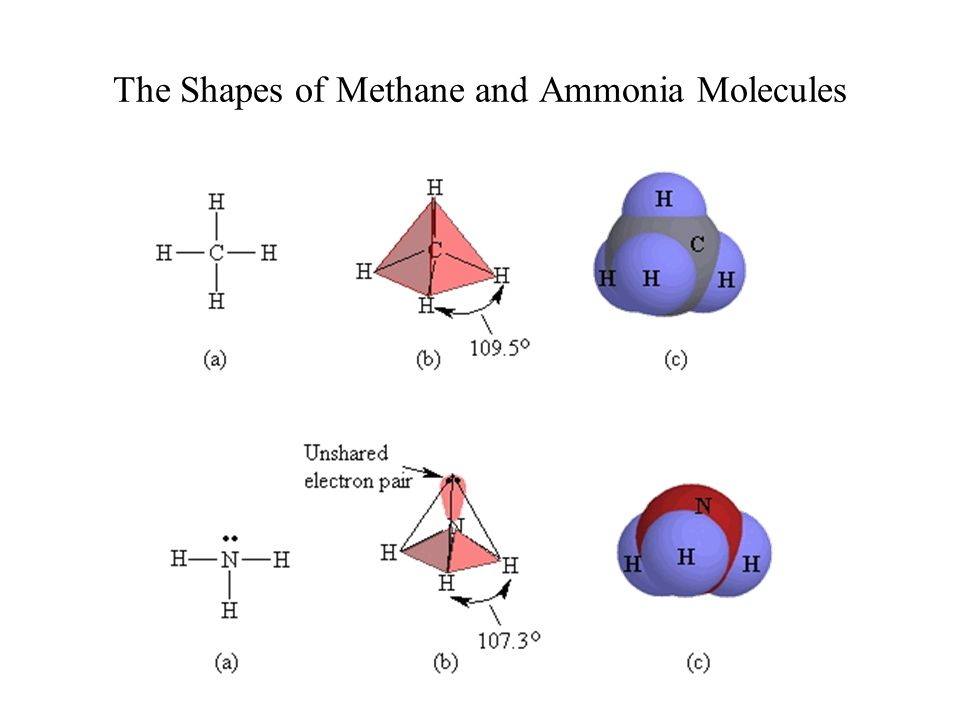 The Shapes of Methane and Ammonia Molecules