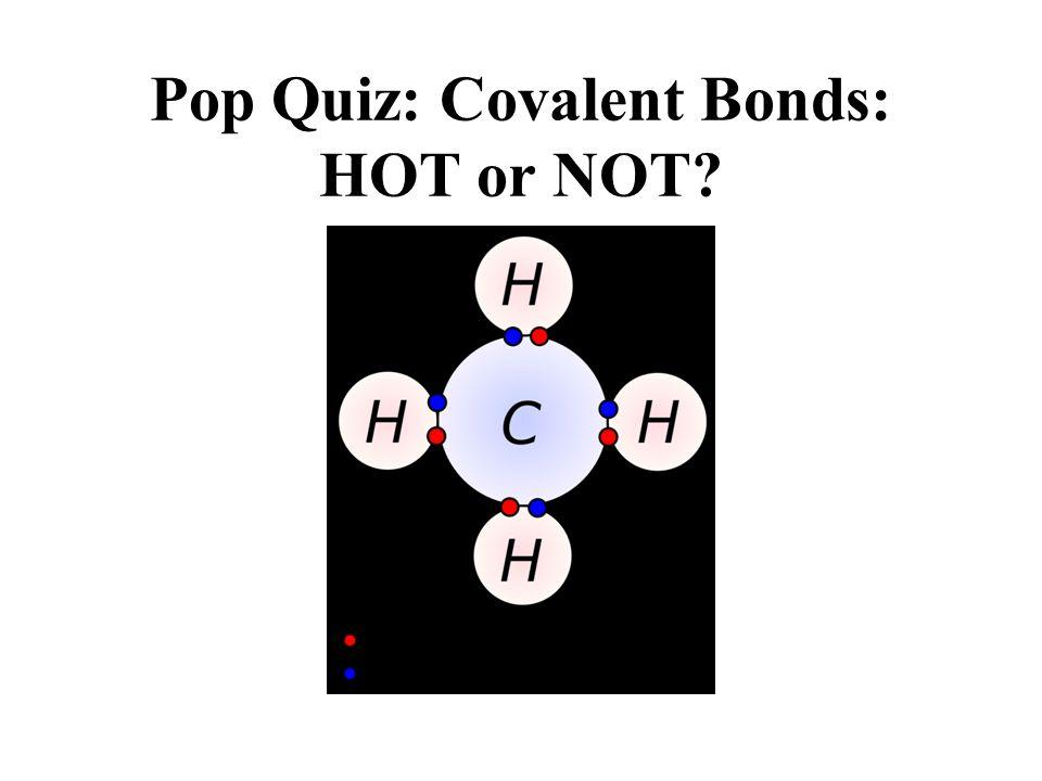 Pop Quiz: Covalent Bonds: HOT or NOT?