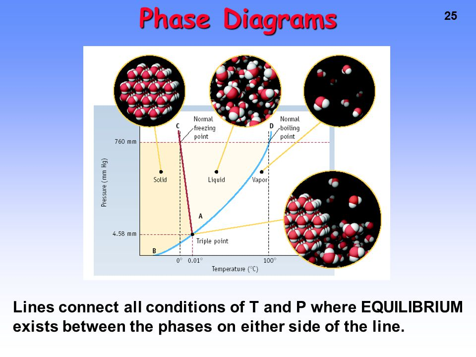25 Phase Diagrams Lines connect all conditions of T and P where EQUILIBRIUM exists between the phases on either side of the line.