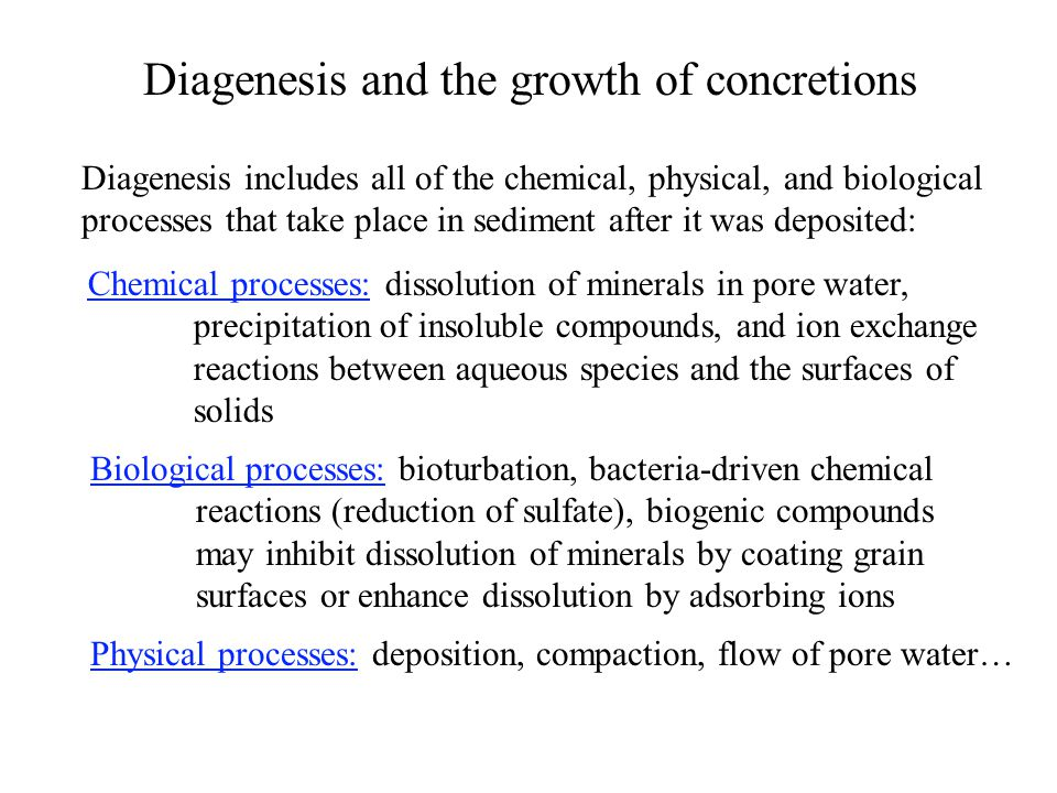 Diagenesis and the growth of concretions Diagenesis includes all of the chemical, physical, and biological processes that take place in sediment after it was deposited: Chemical processes: dissolution of minerals in pore water, precipitation of insoluble compounds, and ion exchange reactions between aqueous species and the surfaces of solids Biological processes: bioturbation, bacteria-driven chemical reactions (reduction of sulfate), biogenic compounds may inhibit dissolution of minerals by coating grain surfaces or enhance dissolution by adsorbing ions Physical processes: deposition, compaction, flow of pore water…