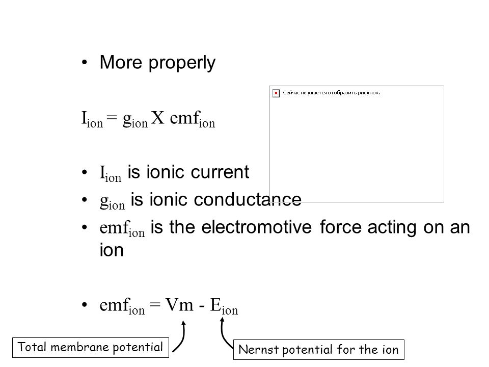 More properly I ion = g ion X emf ion I ion is ionic current g ion is ionic conductance emf ion is the electromotive force acting on an ion emf ion = Vm - E ion Total membrane potential Nernst potential for the ion
