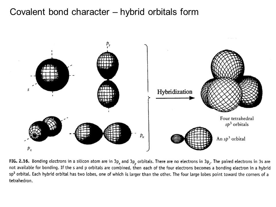 Covalent bond character – hybrid orbitals form