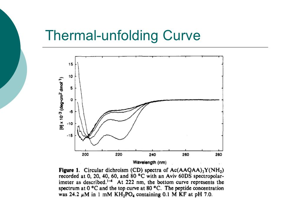 Thermal-unfolding Curve