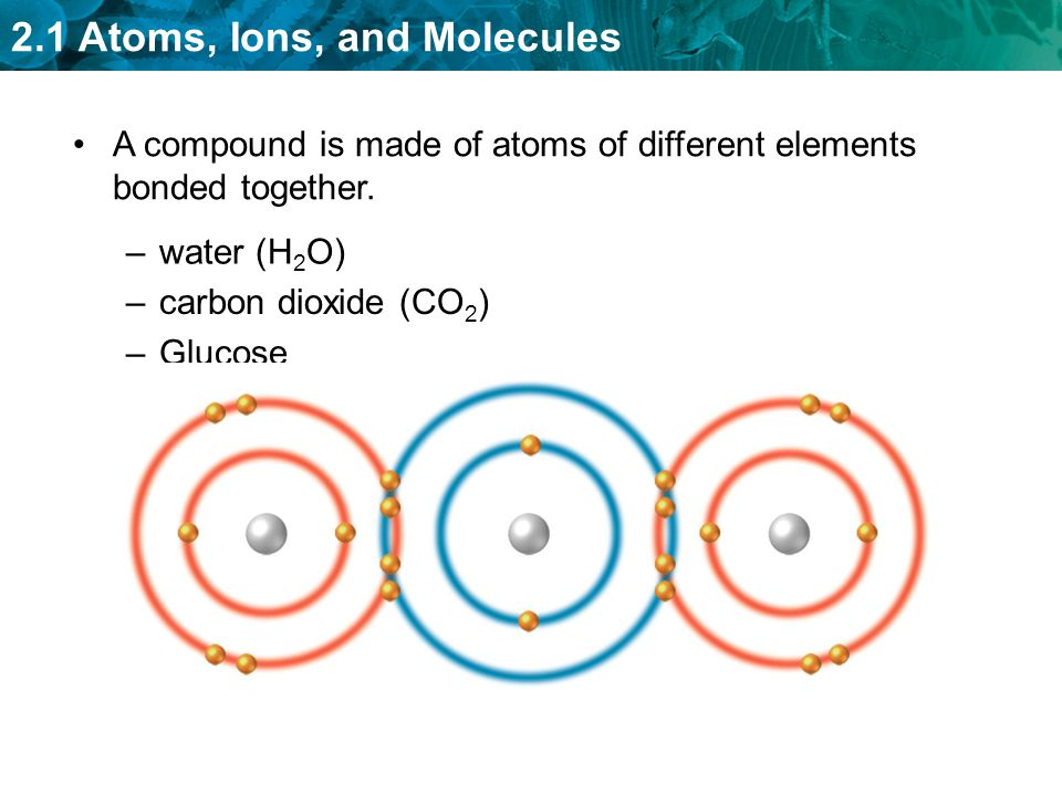 2.1 Atoms, Ions, and Molecules –carbon dioxide (CO 2 ) –Glucose A compound is made of atoms of different elements bonded together.