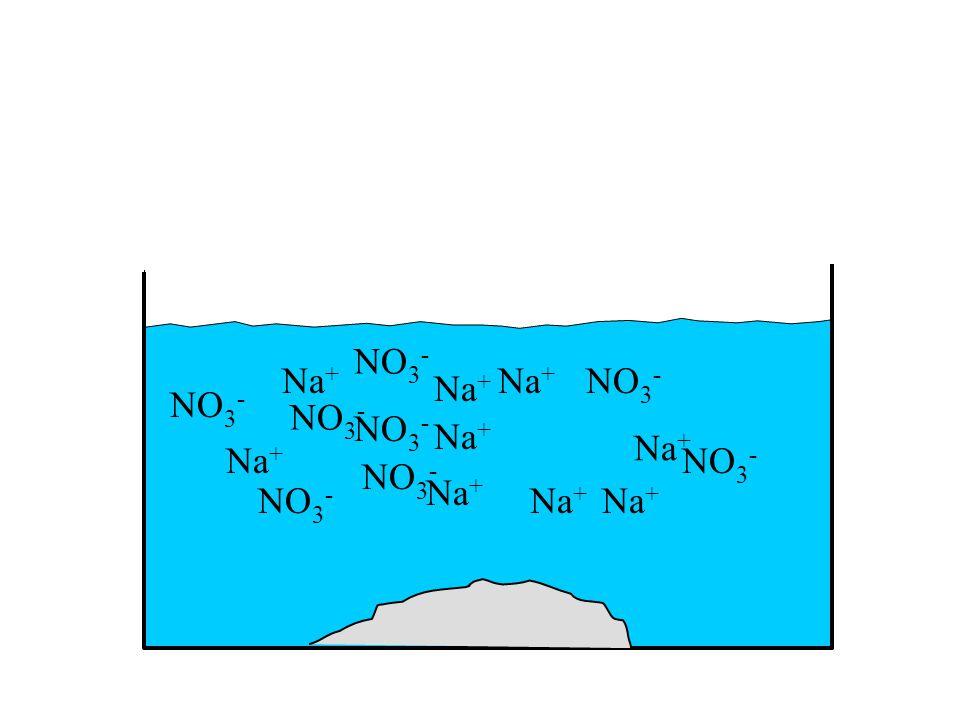 NO 3 - Na + NO 3 - Na + NO 3 - Na + NO 3 - Na + NO 3 - Na + NO 3 - Na + NO 3 - Na + NO 3 - Na +