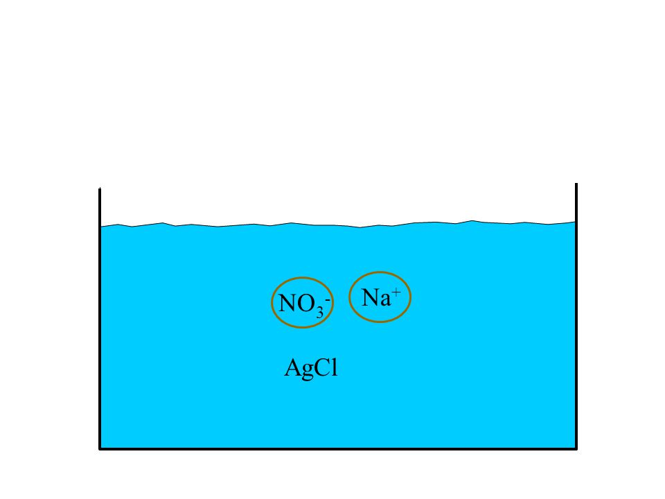 NO 3 - Na + AgCl