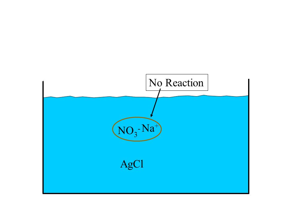 NO 3 - Na + No Reaction