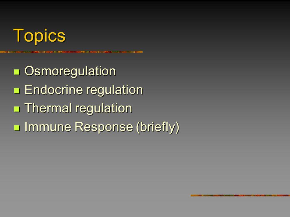 Saltwater teleosts: drink active tran.passive diff.