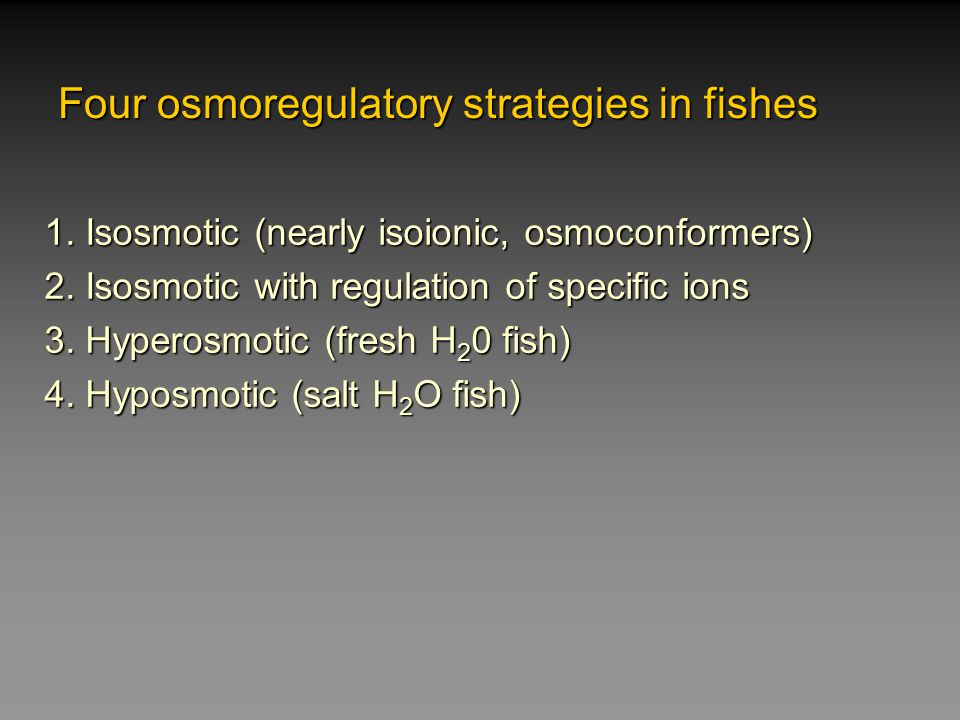 Four osmoregulatory strategies in fishes 1. Isosmotic (nearly isoionic, osmoconformers) 2. Isosmotic with regulation of specific ions 3. Hyperosmotic