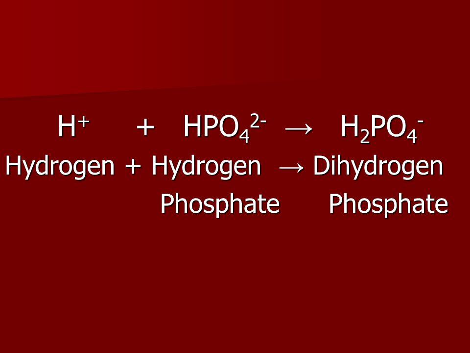 H + + HPO 4 2- → H 2 PO 4 - H + + HPO 4 2- → H 2 PO 4 - Hydrogen + Hydrogen → Dihydrogen Phosphate Phosphate Phosphate Phosphate