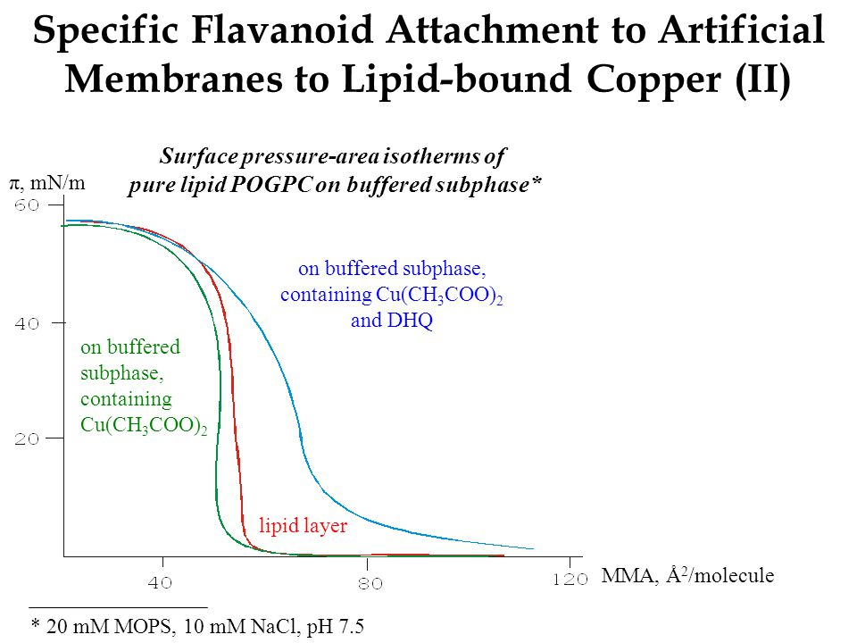 Specific Flavanoid Attachment to Artificial Membranes to Lipid-bound Copper (II) π, mN/m Surface pressure-area isotherms of pure lipid POGPC on buffer
