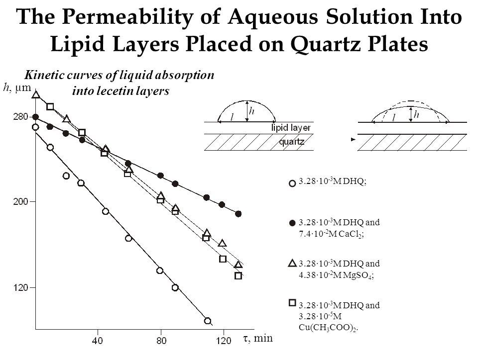 The Permeability of Aqueous Solution Into Lipid Layers Placed on Quartz Plates 3.28∙10 -3 M DHQ; 3.28∙10 -3 M DHQ and 7.4∙10 -2 M CaCl 2 ; 3.28∙10 -3