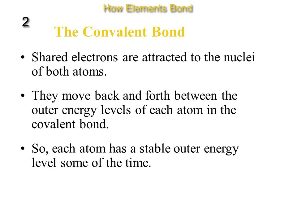The Convalent Bond Shared electrons are attracted to the nuclei of both atoms.