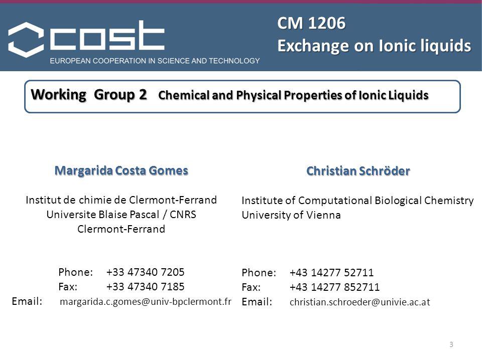 CM 1206 Exchange on Ionic liquids Margarida Costa Gomes Institut de chimie de Clermont-Ferrand Universite Blaise Pascal / CNRS Clermont-Ferrand Phone: