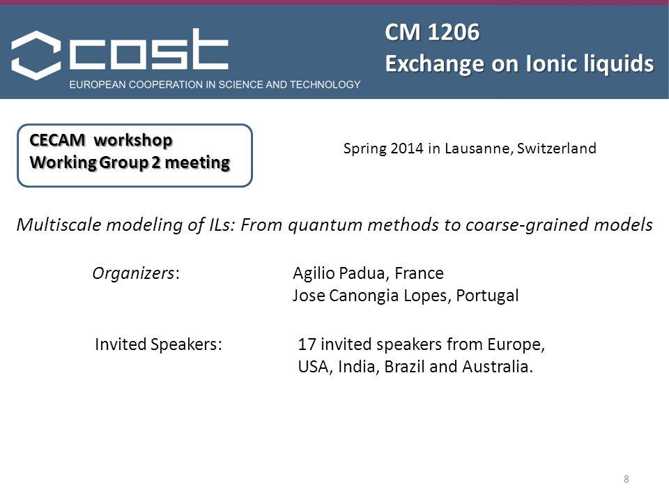CM 1206 Exchange on Ionic liquids Other ideas.