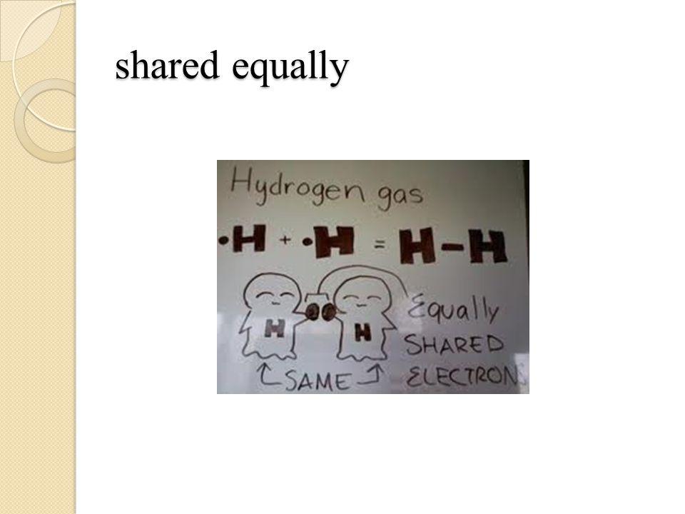 shared equally