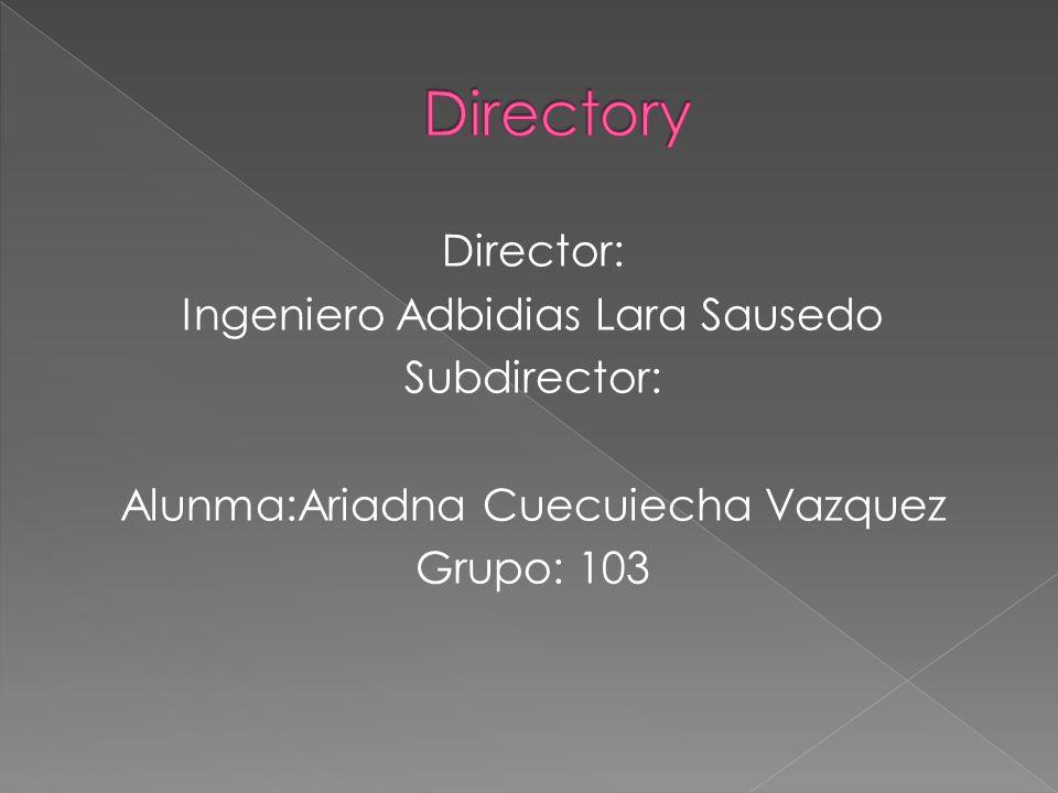 Director: Ingeniero Adbidias Lara Sausedo Subdirector: Alunma:Ariadna Cuecuiecha Vazquez Grupo: 103