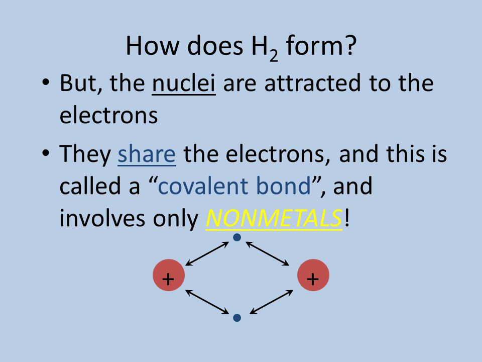 How does H 2 form? The nuclei repel each other, since they both have a positive charge (like charges repel). ++ (diatomic hydrogen molecule) + +