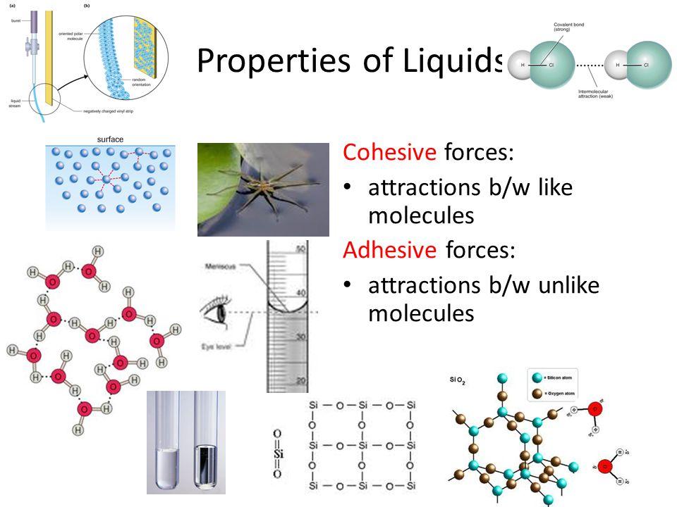 Properties of Liquids Cohesive forces: attractions b/w like molecules Adhesive forces: attractions b/w unlike molecules