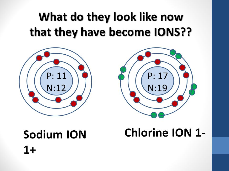 P: 11 N:12 What do they look like now that they have become IONS?? P: 17 N:19 Sodium ION 1+ Chlorine ION 1-